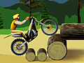 Stunt Dirt Bike play online