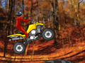 Quad Extreme Racer play online